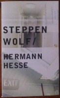 Picture of Steppenwolf book cover