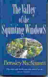 Picture of The Valley of the Squinting Windows Book Cover